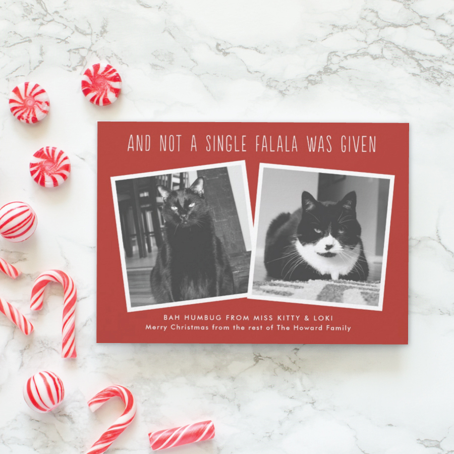 Funny Christmas Cards | 2018 Holiday Collection - Banter and Charm