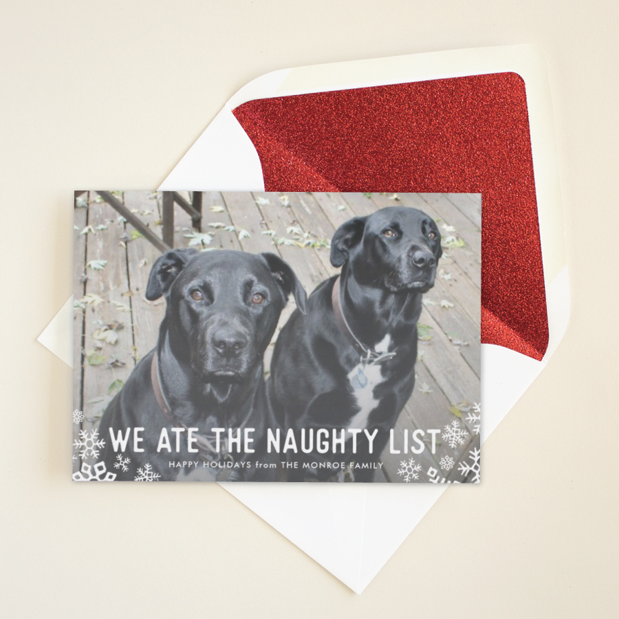 funny pet holiday card for naughty pets