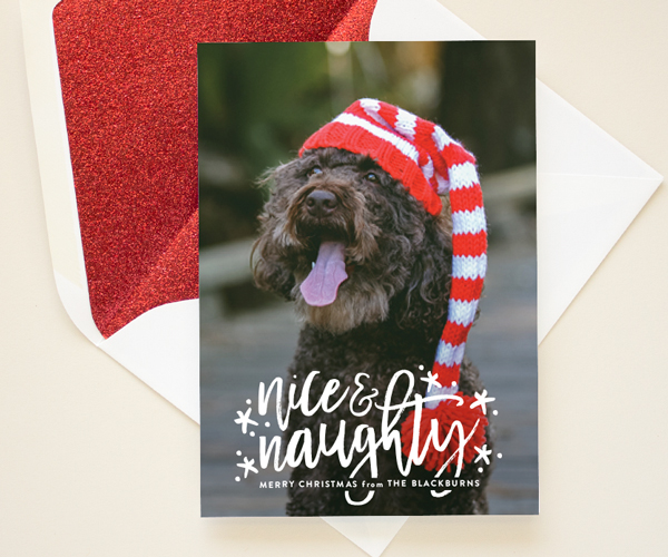 funny christmas cards for minted