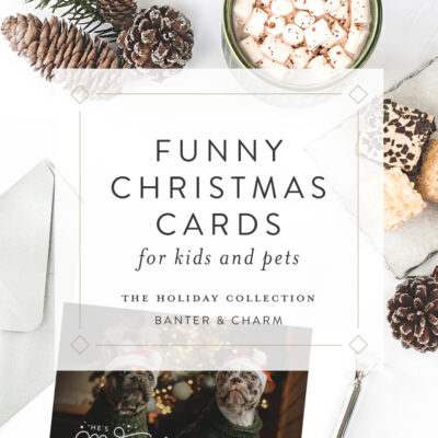 Funny Pet Christmas Cards | 2020 Holiday Collection